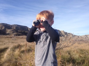 Looking for prairie dogs in Theodore Roosevelt National Park